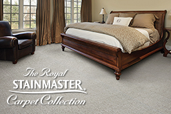Royal Stainmaster